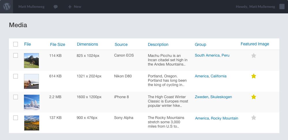 Custom Admin Overview for Media