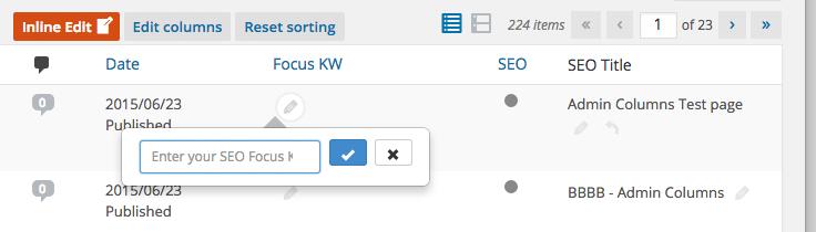 Inline edit focus Key Word for SEO
