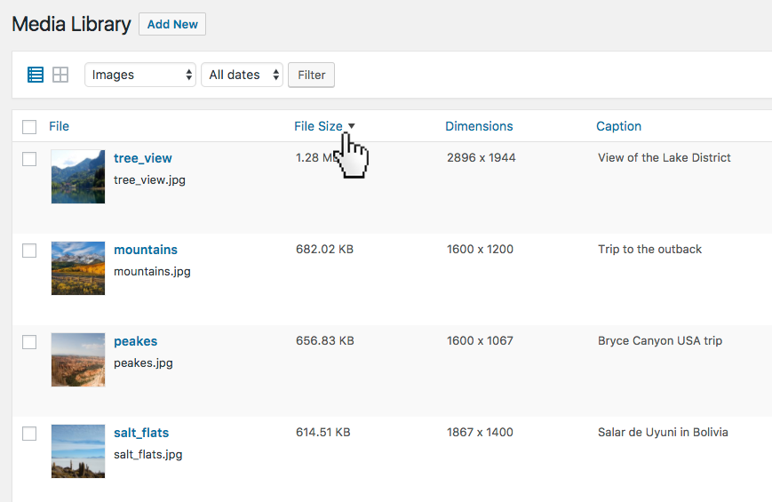 Media overview with custom sortable columns. Sort content and easily adjust it with bulk or inline edit.