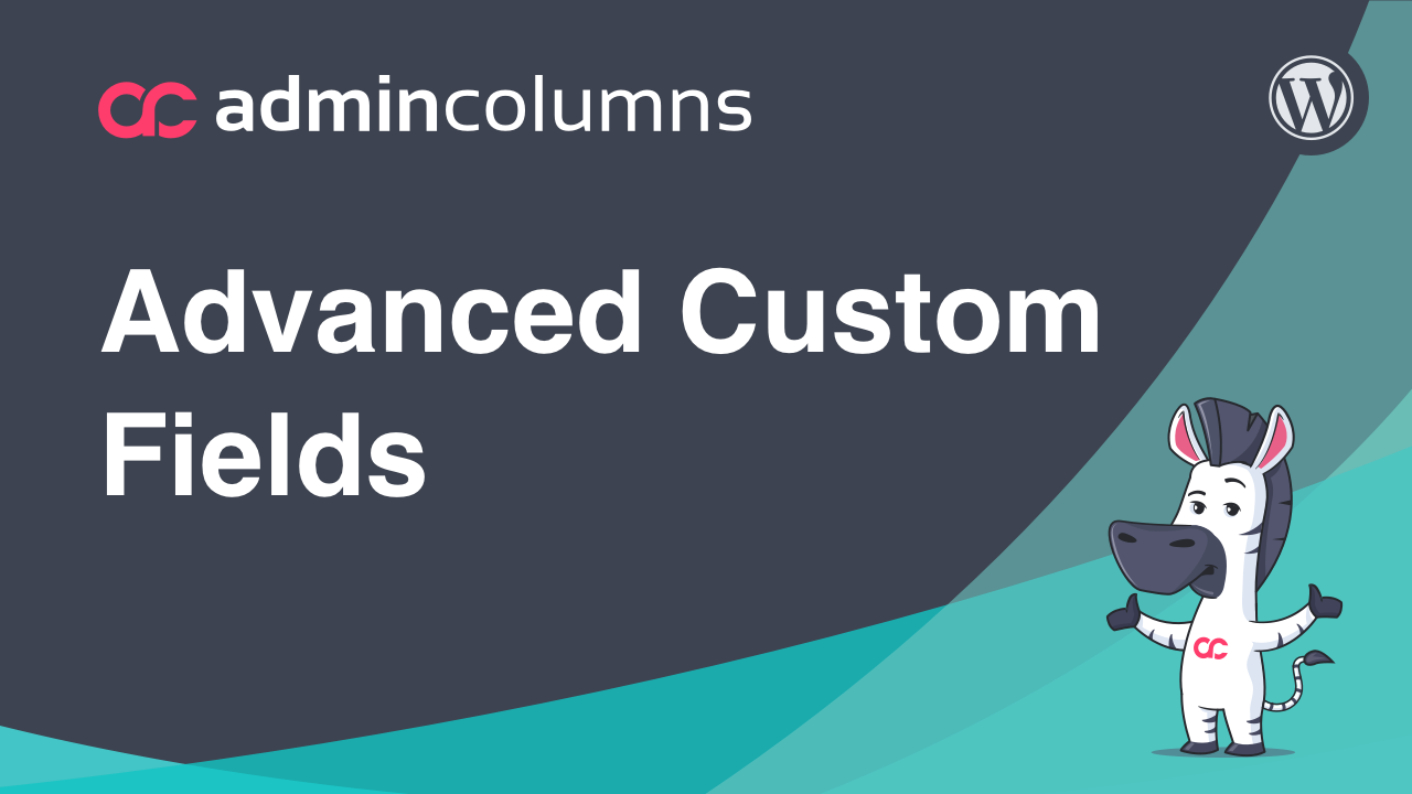 video advanced custom fields